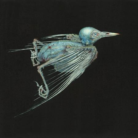 I Have Walked This Body – Jenny Hval & Susanna